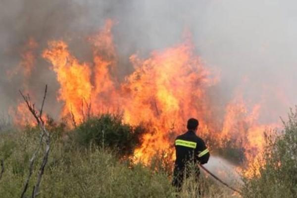 Κρήτη: Σε ύφεση η φωτιά που καίει στην Ιεράπετρα!