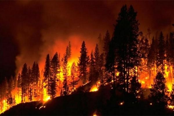 Λάρισα: Τρεις πυρκαγιές ξέσπασαν στην περιοχή - Συναγερμός στην πυροσβεστική!