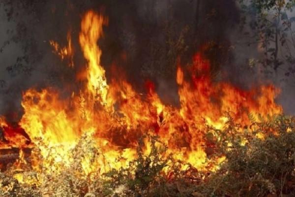 Μεγάλη φωτιά ξέσπασε στη Νάξο