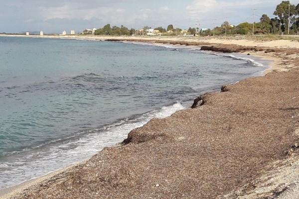 Φρίκη: Η θάλασσα ξέβρασε το πτώμα ενός άνδρα σε παραλία στο Λουτράκι