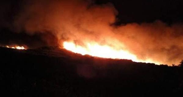 Μεγάλη πυρκαγιά καίει στην Πάτρα - Κινδυνεύει το προστατευόμενο δάσος της Φολόης!