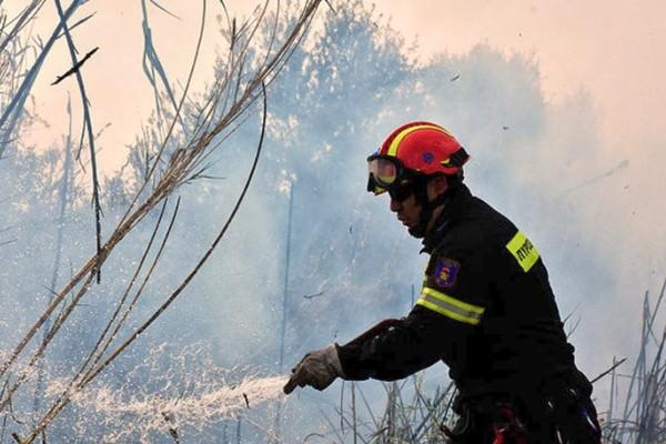 Υπό μερικό έλεγχο η φωτιά στη Δημητσάνα - Παλεύουν ακόμα με τις φλόγες στην Αργολίδα!