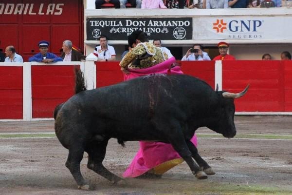 Προσοχή εικόνες που σοκάρουν: Τον κάρφωσε στον λαιμό ένας ταύρος και εκείνος επέστρεψε για να τον σκοτώσει!