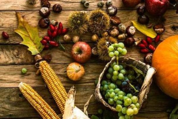 Γιατί το φθινόπωρο είναι η εποχή που πεινάμε πιο πολύ;