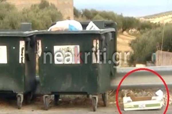 Φρίκη στο Ηράκλειο: Πολτοποίησαν κουταβάκια και τα πέταξαν στα σκουπίδια!