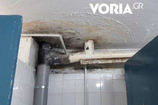 Σοκάρουν οι εστίες στο Αριστοτέλειο Πανεπιστήμιο Θεσσαλονίκης: Χωρίς ζεστό νερό και μούχλα παντού (Photos+video)