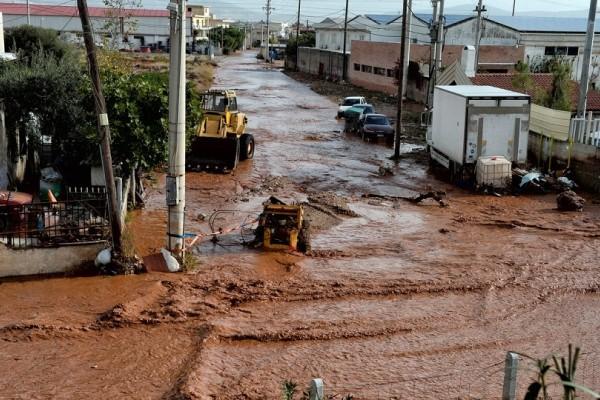Πόρισμα - «φωτιά» για τις φονικές πλημμύρες στη Μάνδρα