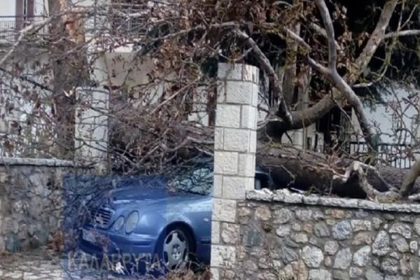 Σοβαρές ζημιές προκάλεσαν οι δυνατοί άνεμοι στα Καλάβρυτα! (Photo)