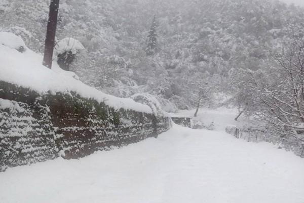 Στο «έλεος» του χιονιά τα Καλάβρυτα! - Χωρίς ρεύμα και νερό έχουν μείνει οι κάτοικοι!
