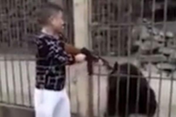 Κινέζος τουρίστας εκτελεί εν ψυχρώ με αυτόματο φυλακισμένη αρκούδα!