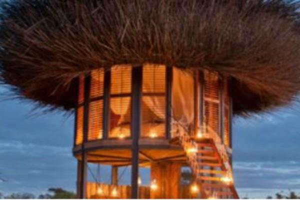 Στην Αφρική υπάρχει το πιο όμορφο Bird House!