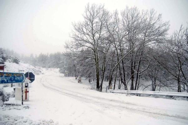 Νέα τραγωδία σοκάρει το Πανελλήνιο: Βρέθηκε νεκρή κάτω από το χιόνι!