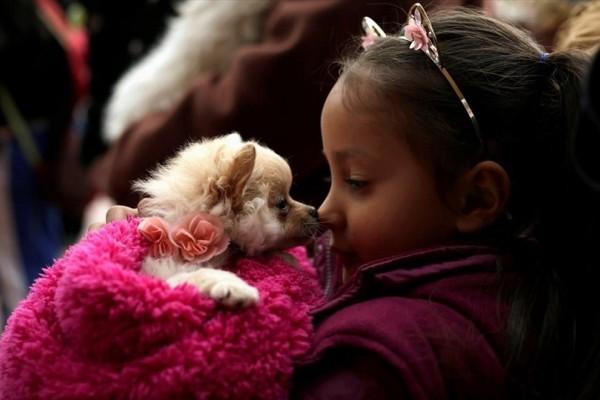 Η φωτογραφία της ημέρας: Ένα μικρό κορίτσι παίζει με τον σκύλο της!