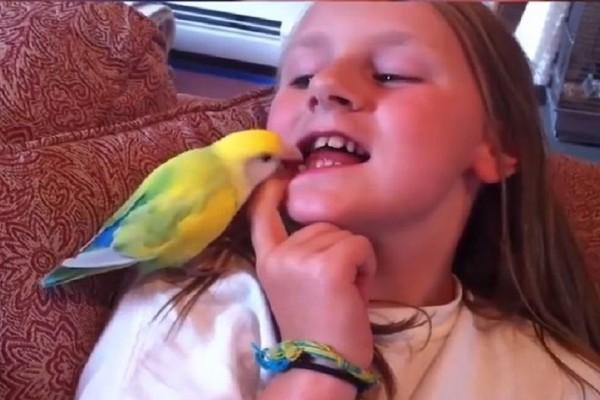Ένα βίντεο που κάνει τον γύρο του διαδικτύου! - Παπαγάλος της έβγαλε το δόντι με μία κίνηση!