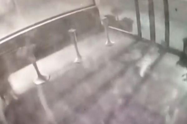 Βίντεο - σοκ: Η στιγμή της έκρηξης σε κατάστημα στο Μαρούσι!