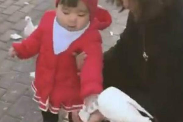 Κλάμα: Κοριτσάκι γραπώνει περιστέρι και του...κλέβει το φαγητό! (video)