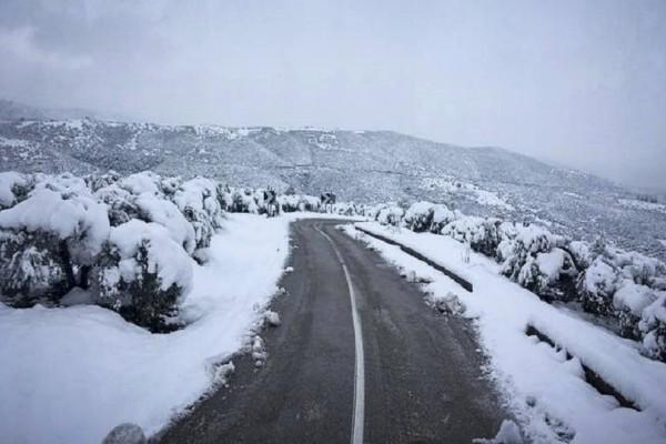 Ο καιρός τρελάθηκε για τα καλά! -  Ο Γιάννης Καλλιάνος προειδοποιεί: Σε ποιες περιοχές έρχονται χιόνια και σε ποιες άνοδος της θερμοκρασίας;