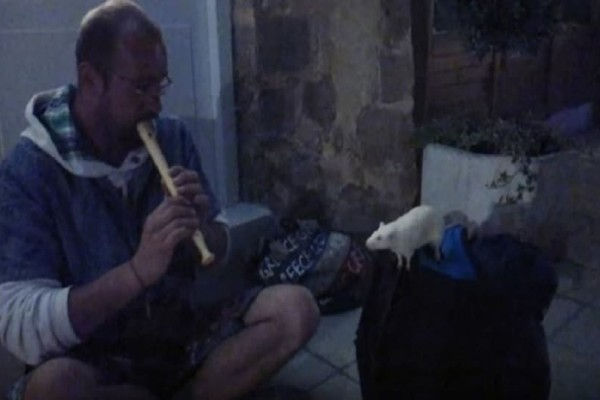 Ο απίθανος Ρίκι που έχει γίνει viral! - Το ποντίκι-μασκότ των Χανίων! (Video)