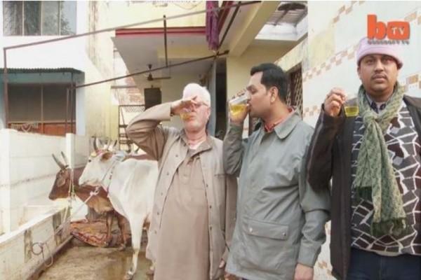 Πίνουν ούρα αγελάδας «για να γιατρέψουν» πάσα νόσο! Εσύ θα το έκανες; (video)