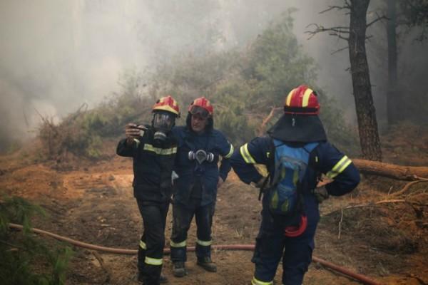 Τεράστια φωτιά στην Κύμη: Δεν απειλούνται σπίτια (video)