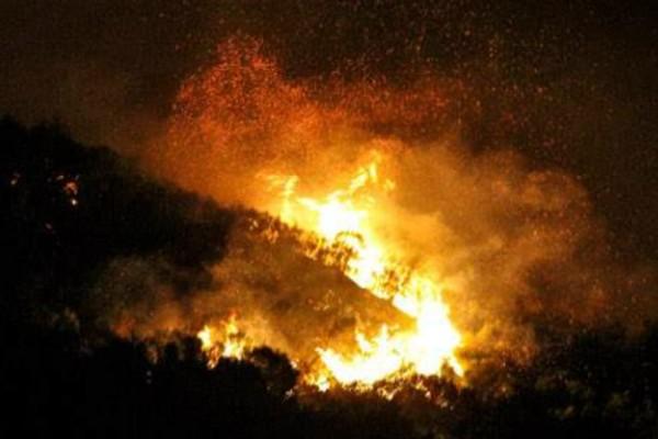 Κύμη: Υπό έλεγχο η μεγάλη πυρκαγιά!