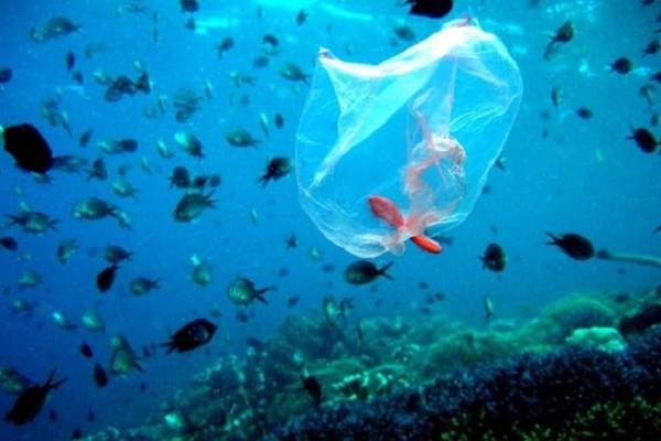 Απίστευτο κ όμως αληθινό: Εντοπίστηκε πλαστική σακούλα στο βαθύτερο σημείο των ωκεανών!