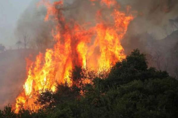 Αλόννησος: Εμπρησμός η μεγάλη φωτιά; Τι λέει ο δήμαρχος