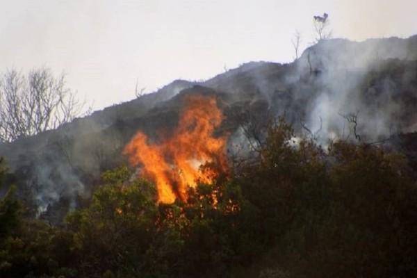 Μεγάλη πυρκαγιά ξέσπασε στην Κερατέα!