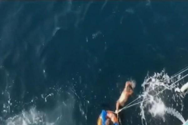 Ναυτικός έσωσε 70χρονη που έπεσε από πλοίο στη θάλασσα του Σαρωνικού (video)