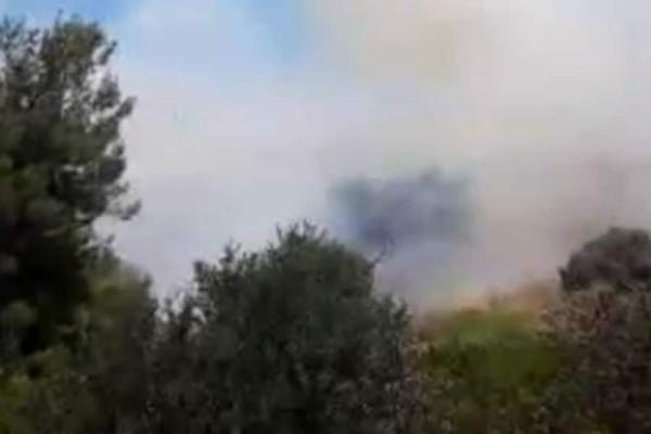 Μεγάλη φωτιά στο άλσος Συγγρού - Σπεύδουν πυροσβεστικά αεροσκάφη
