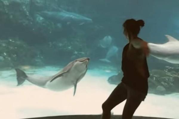 Απίστευτο κι όμως αληθινό: Το κορίτσι που καταφέρνει και κάνει ένα δελφίνι να «χαμογελάσει»! (Video)