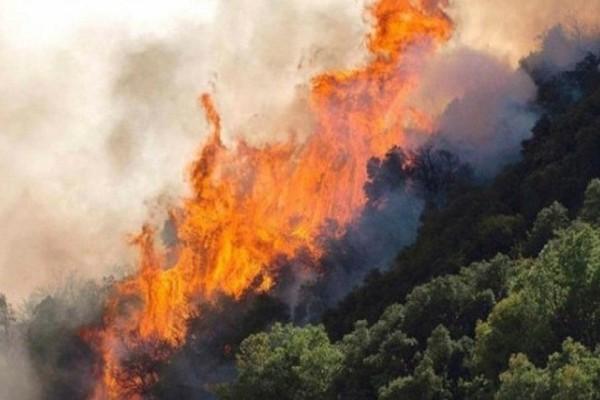 Πυρκαγιά στο Αγρίνιο!