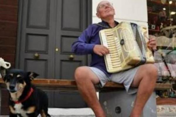 Θλίψη: Πέθανε η θλιμμένη σκυλίτσα της Πάτρας- Λίγους μήνες μετά τον θάνατο του αφεντικού της