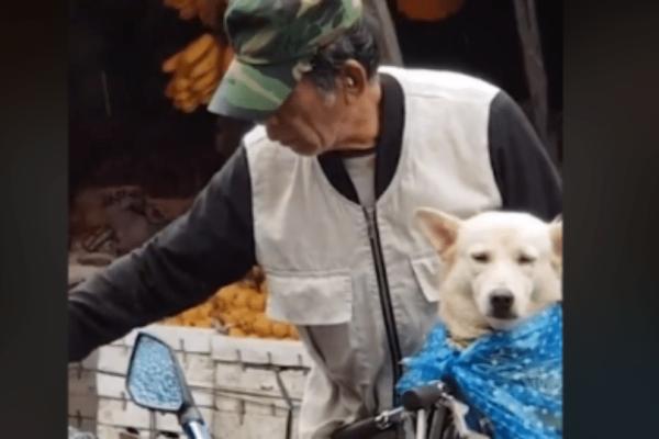 Το πιο γλυκό βίντεο:  Άνδρας κάνει τα πάντα για να μην βραχεί ο σκύλος του!