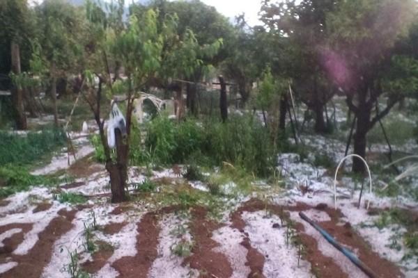 Τρίκαλα: Μεγάλες καταστροφές από το χαλάζι!