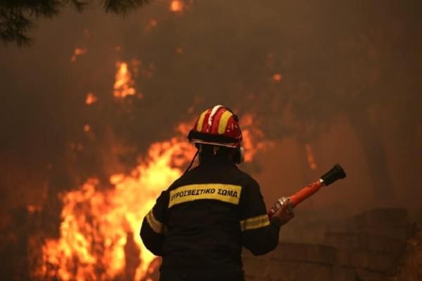 Πυρκαγιά στην Κινέτα: Σε ετοιμότητα οι δυνάμεις του στρατού, του ναυτικού και της αεροπορίας!