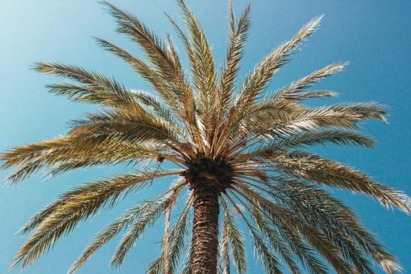 Θα πάθετε πλάκα! Τρία υπέροχα μέρη για διακοπές που όμως είναι επικίνδυνα (photos)