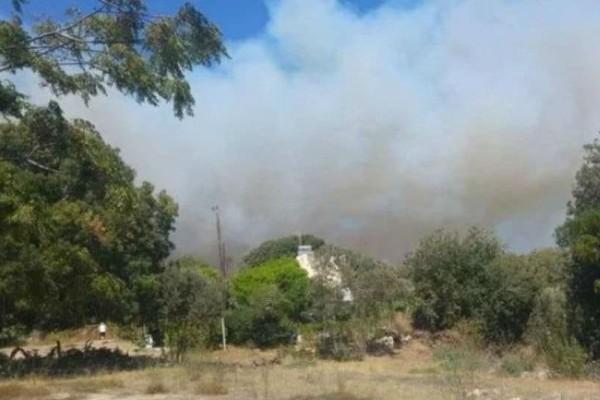 Ρόδος: Σε απόσταση αναπνοής οι φλόγες από τα σπίτια (video)