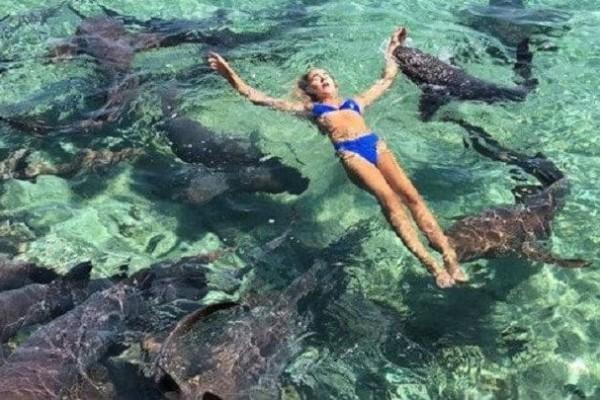 Καρχαρίας δάγκωσε μοντέλο στις Μπαχάμες! Συγκλονίζουν οι φωτογραφίες...
