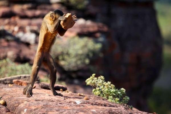 Η φωτογραφία της ημέρας: Η ζωή στην φύση!
