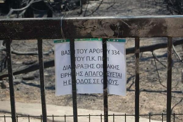 Απίστευτο! Κλείδωσαν το οικόπεδο που βρέθηκαν οι 28 απανθρακωμένοι και δεν άφησαν τους πυροσβέστες να κάνουν τις έρευνές τους (photos)