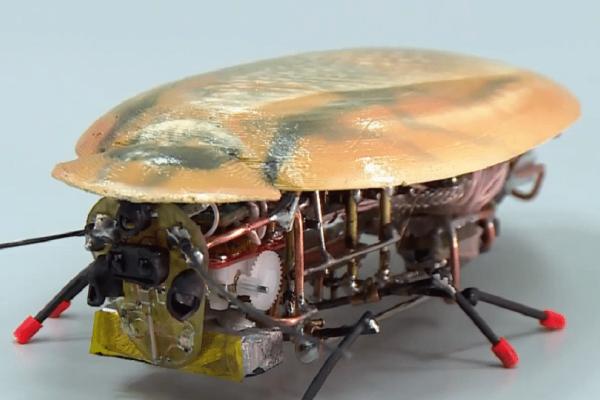 Άκρως πρωτοποριακό: Έρχεται η ρομποτική... κατσαρίδα για την εξερεύνηση των βυθών! (Video)