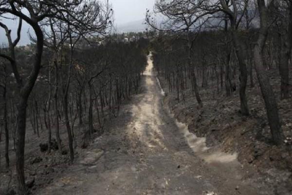 Απίστευτες εικόνες: Drone καταγράφει την καταστροφή στα Γεράνεια Όρη!