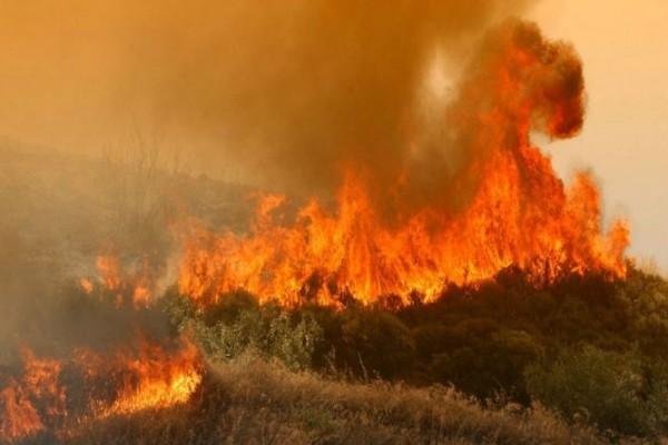 Πυρκαγιά στην Κάρυστο!
