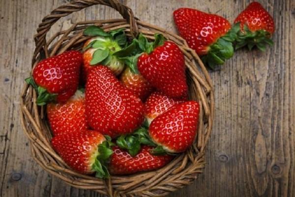 Εσύ θα έδινες άραγε 22 δολάρια για μία μόνο φράουλα;