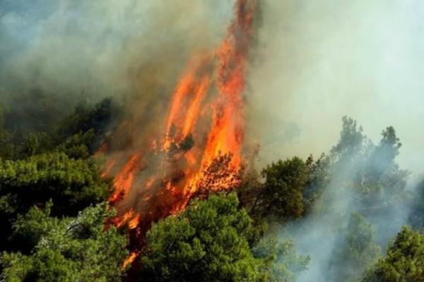 Σε εξέλιξη μεγάλη φωτιά στην Κέρκυρα!