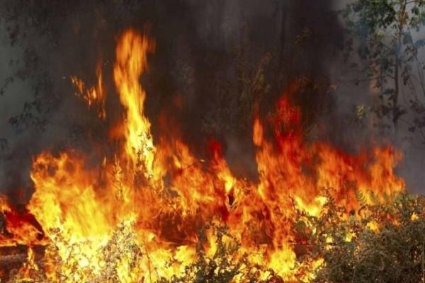 Μεγάλη φωτιά στην Κερατέα!
