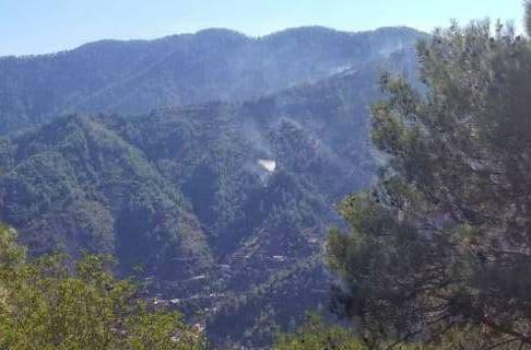 Κύπρος: Υπό έλεγχο η πυρκαγιά κοντά στη μονή Κύκκου -Συνελήφθη ο δράστης
