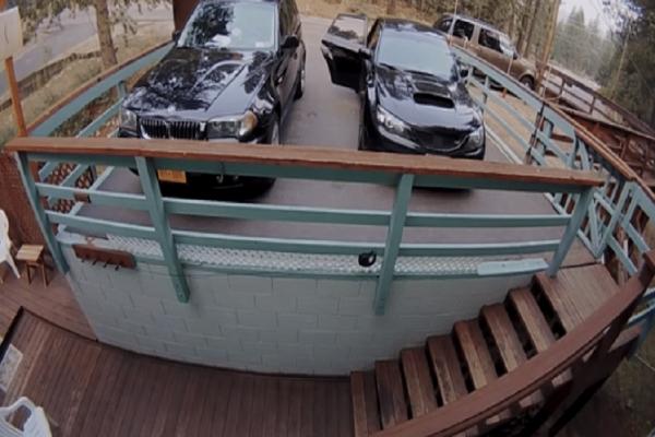 Απίστευτο βίντεο: Αρκούδα ανοίγει πόρτα αυτοκινήτου και κλέβει σνακ!
