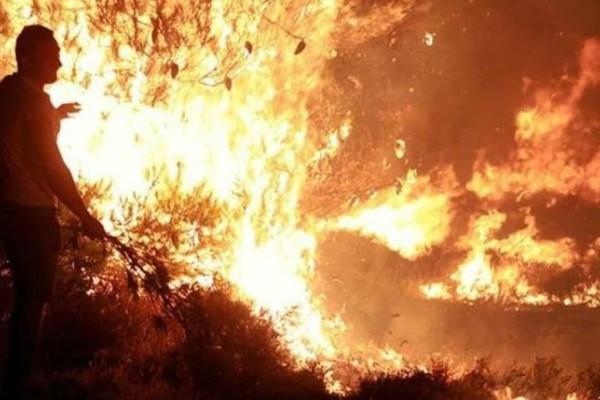 Βίντεο ντοκουμέντο: Εμπρηστής από αμέλεια παραλίγο να βάλει φωτιά! (video)